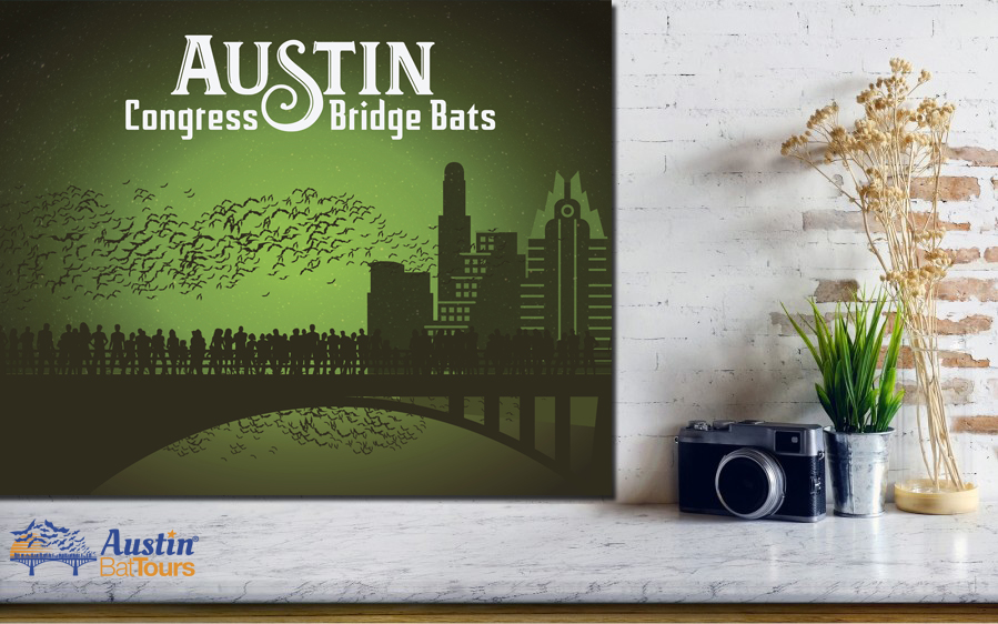 austin bat tours congress bridge poster green