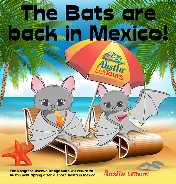 The Bats are back in Mexico! Illustration by Austin Bat Tours in Austin, Texas