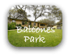 Balcones Park Austin TX Neighborhood Guide