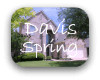 Davis Spring Austin TX Neighborhood Guide