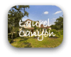 Laurel Canyon Austin TX Neighborhood Guide