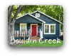 Bouldin Creek South Austin TX Neighborhood Guide