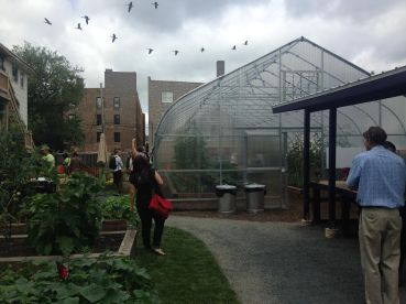 A view from inside PCC Austin Farm on Thur. August 20. The greenhouse was recently completed. Michael Romain/Staff.