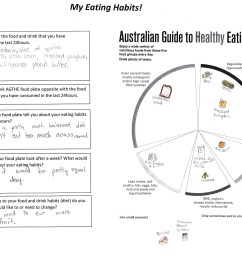 interprets their own food diary 2 annotation 2 suggests an option to improve diet based on the australian guide to healthy eating guide [ 3307 x 2338 Pixel ]