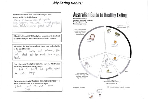 small resolution of interprets their own food diary 2 annotation 2 suggests an option to improve diet based on the australian guide to healthy eating guide