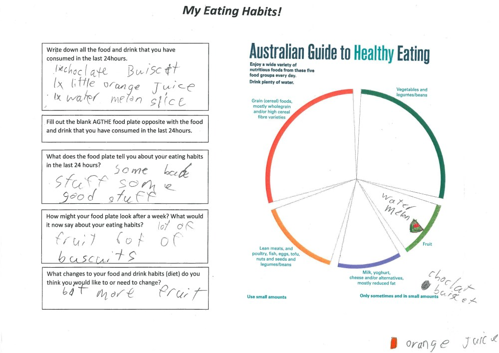 medium resolution of suggests an option for improving eating habits based on the australian guide to healthy eating