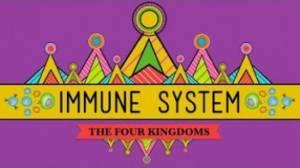immune-system-at-80