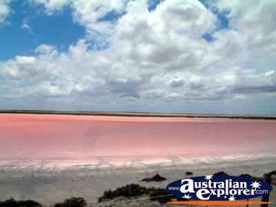 PINK LAKE BETWEEN TAILEM BEND AND STRATHALBYN VIRTUAL
