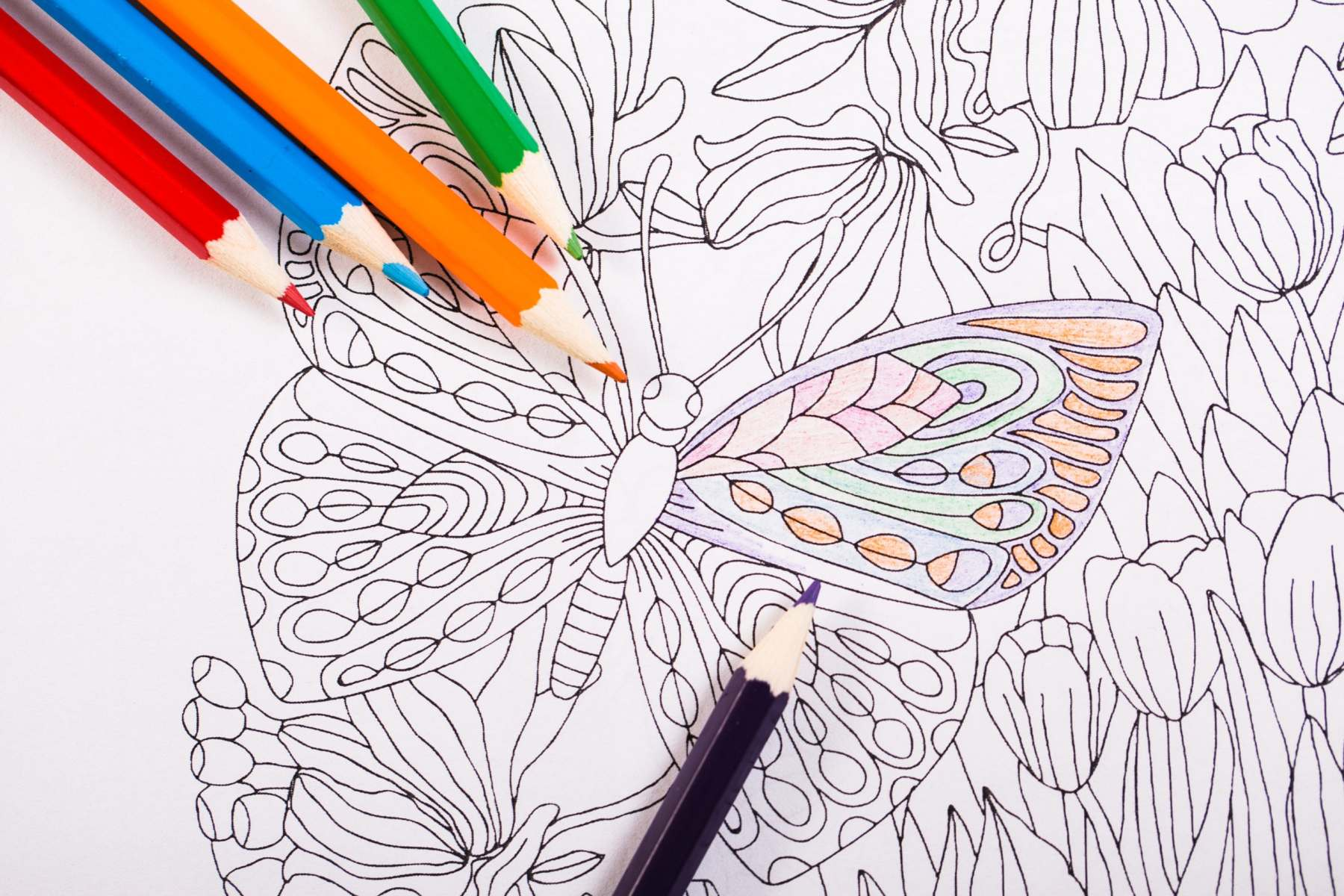 Colouring-in - Shutterstock