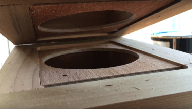 Building hive stingless bees