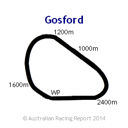 Gosford Racecourse track info, scratchings, live odds