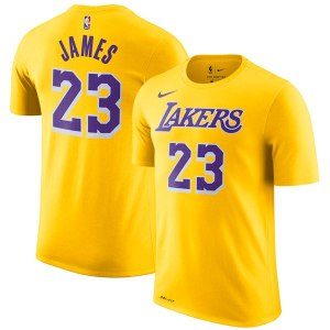Men's Los Angeles Lakers LeBron James Nike Gold Icon Edition 2018/19 Name & Number Performance T-Shirt