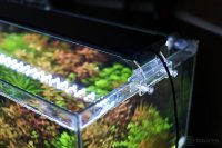 Best LED Aquarium Lighting  An Expert 2018 Guide ...