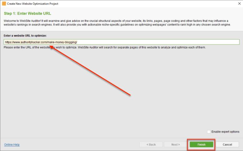 Revisore del sito Web Immettere l'URL