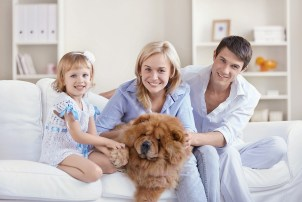 bigstock-Together-With-Pets-10315139