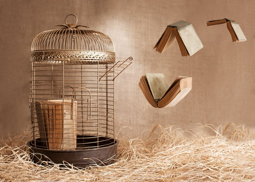 5 Ways to Keep Your Book From Rotting in a Paper Prison