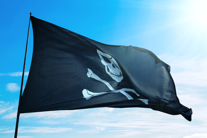Authors: Piracy is Not Your Enemy