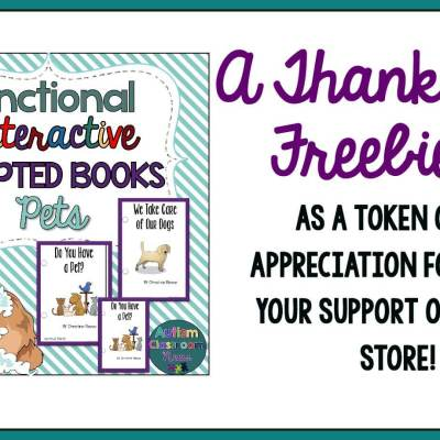 A Thank You Freebie for All of Your Support