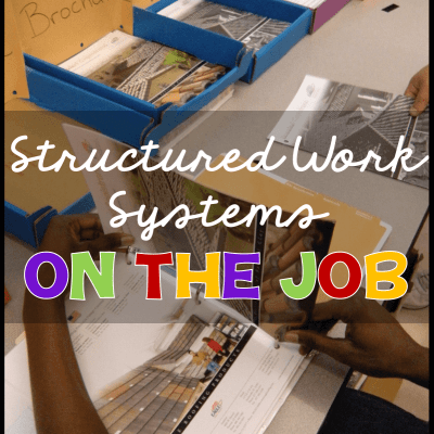 What Can Independent Work Systems Do For You on the Job