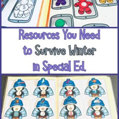 Special Education Winter Resources Roundup