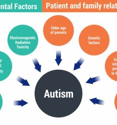 below mentioned are a few probable causes of autism  [ 2000 x 1333 Pixel ]