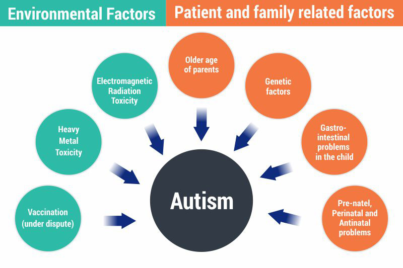 hight resolution of below mentioned are a few probable causes of autism