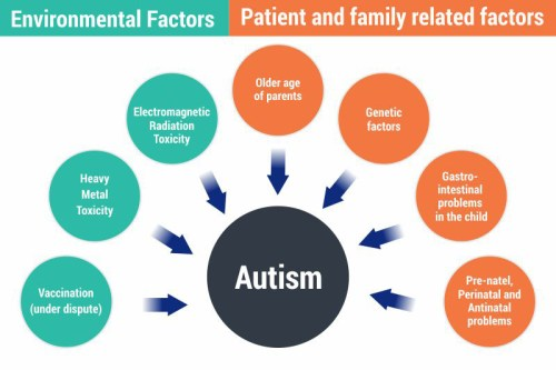 small resolution of below mentioned are a few probable causes of autism