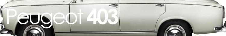 403 banner