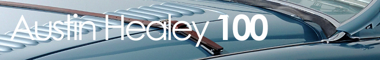 healey 100 banner