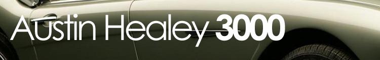 healey3000ban