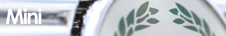 mini banner