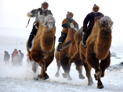 TOPSHOTS-CHINA-TOURISM-NAADAM