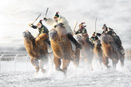 Camel Race 3
