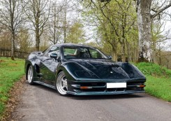 1994-lister-storm-1