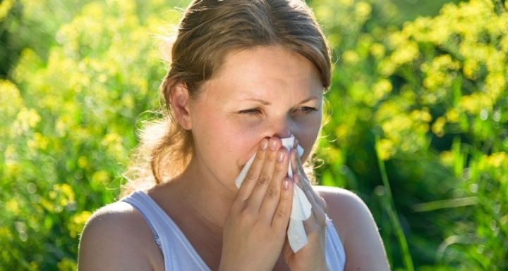 Good and Bad Plants for People with Allergies
