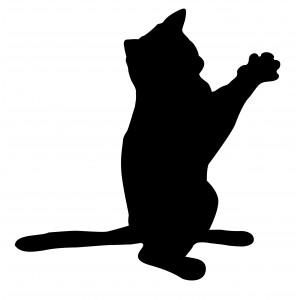 Bezaubernde Katze - Hot and Cool - AUTOAUFKLEBER