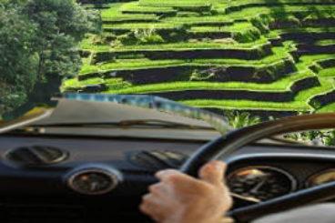 Rental car places