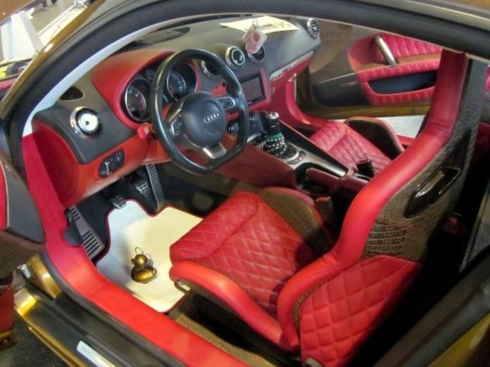 Audi TT Louis Vuitton