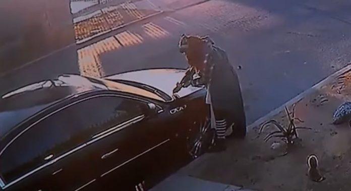 woman-revenge