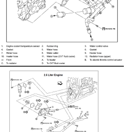 2010 nissan sentra engine diagram wiring diagram load 2010 nissan maxima motor mount diagram 2010 nissan [ 775 x 1248 Pixel ]