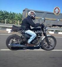 RE Himalayan Spied