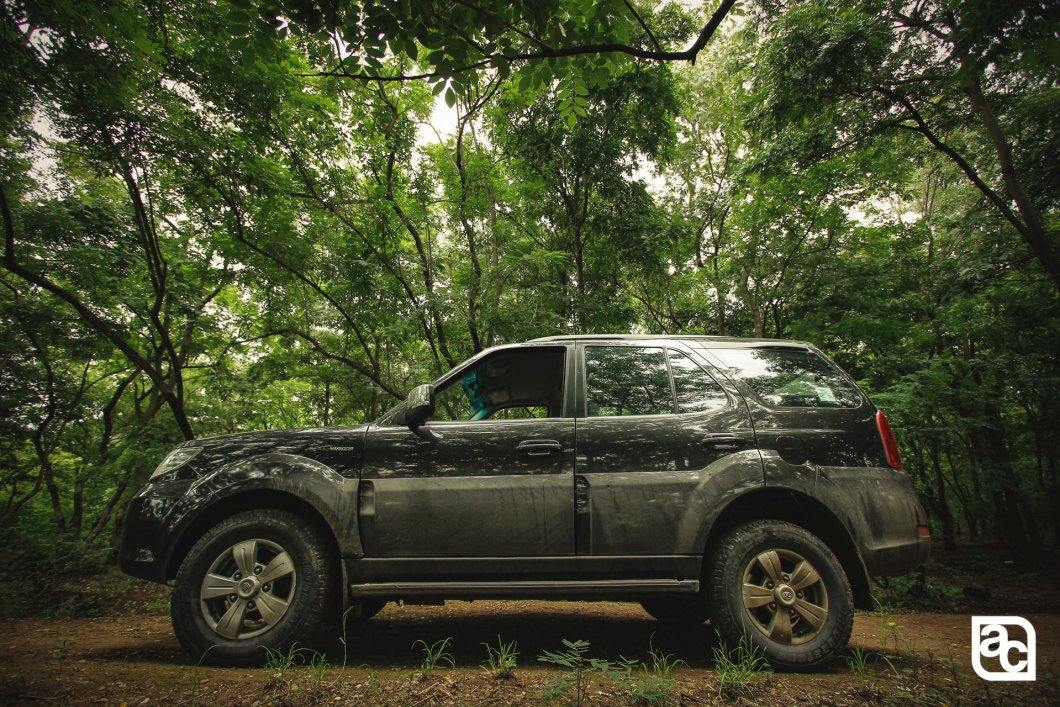 2015 Safari Storme side in jungle
