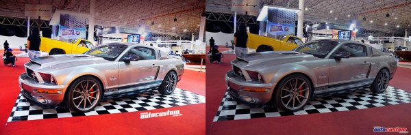 mustang-shelby-gt-500-super-snake-cinza-autoesporte-exposhow-2013