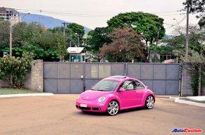beetle-rosa-barbie-brasil-01