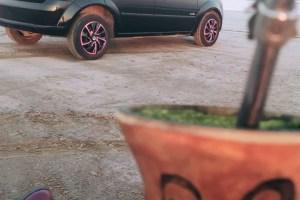 Fiesta 2010 preto aro rosa