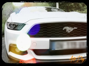 Ford Mustang Convertible 1
