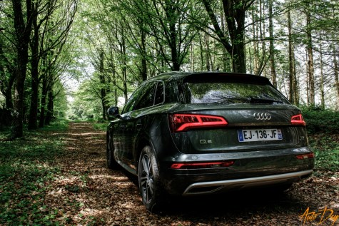 Roadtrip Audi Q5-11