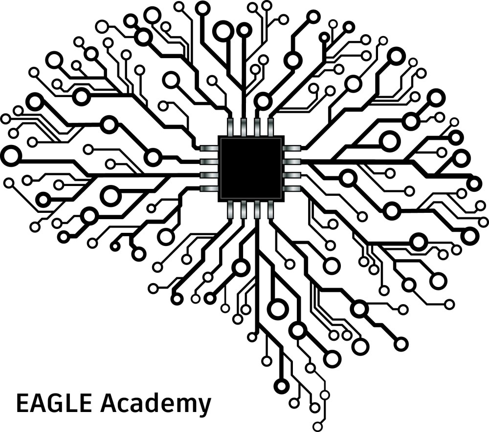 medium resolution of eagle academy