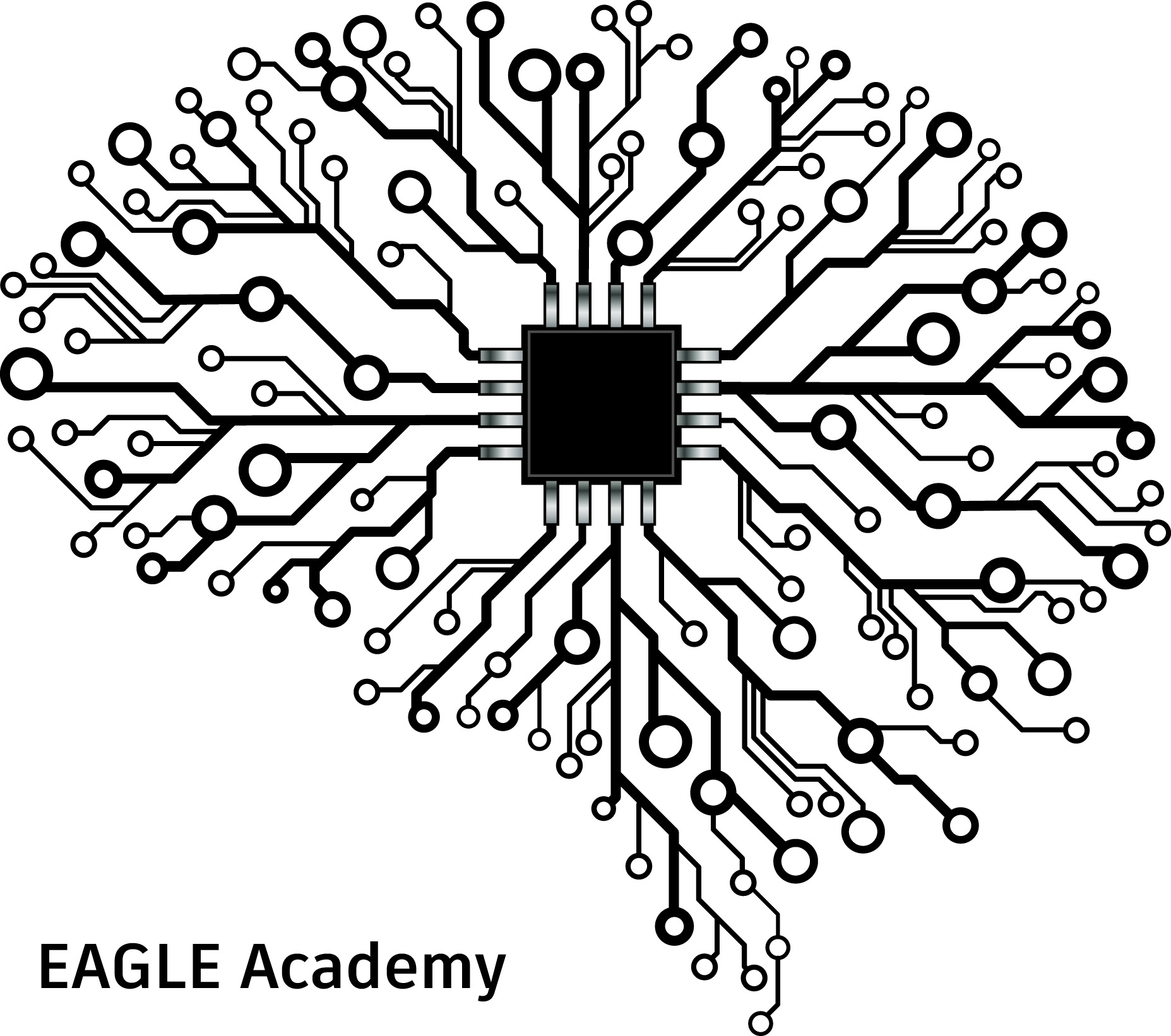 hight resolution of eagle academy