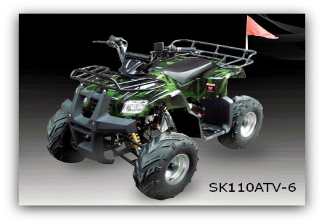 Jonway ATV SK110ATV-6